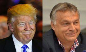 trump-orbán